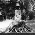 Mohácsy Mátyás szobra szülővárosában, Békéscsabán
